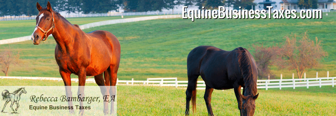 equinrebusinesstaxes1150x40